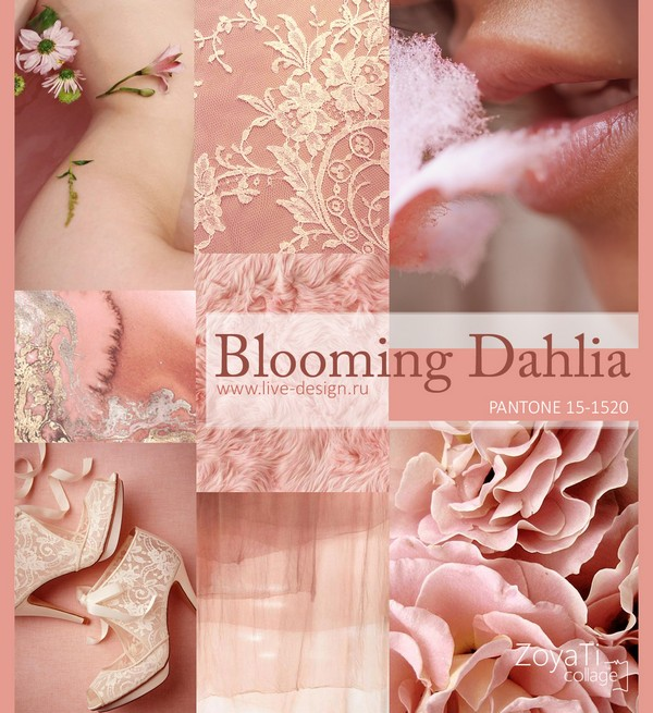 Модный цвет Pantone 2018 - Blooming Dahlia. Коллаж от Зои Ти