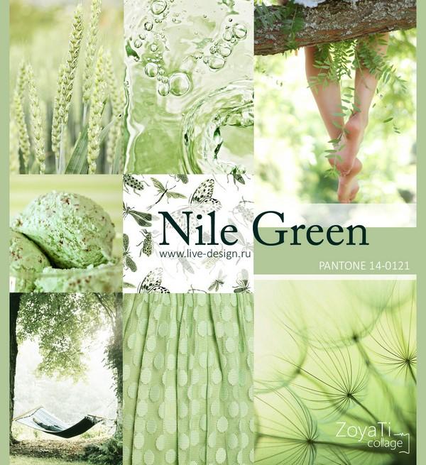 Модный цвет Pantone 2018 - Nile Green. Коллаж от Зои Ти