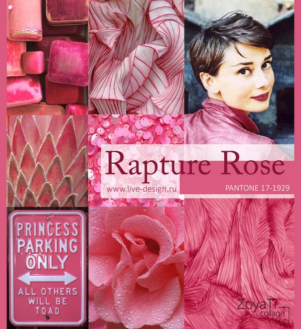 Модный цвет Pantone 2018 - Rapture Rose. Коллаж от Зои Ти